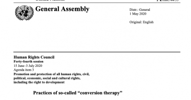 "Practices of so-called ""conversion therapy"", the latest Report by IESOGI"
